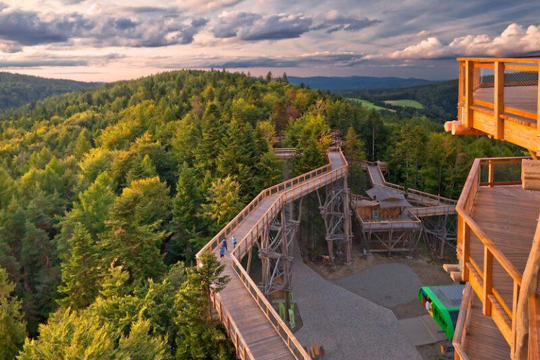 Wieża widokowa - Słotwiny Arena